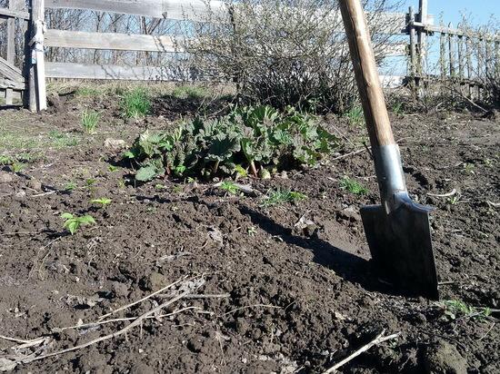 В Марий Эл исчезает имущество с садовых участков