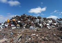 В Солонцах нарушителей застали врасплох на несанкционированной свалке мусора