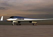 Экс-командующий объяснил, зачем дальней авиации РФ нужен новый бомбардировщик-невидимка