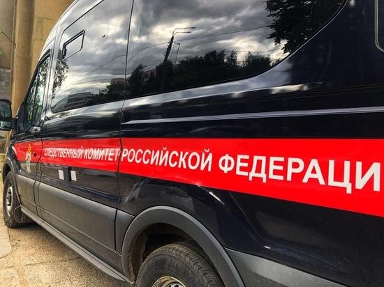 Следователи проверяют информацию о похищении ребенка в Тверской области