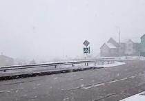 В Тазовском выпал снег в конце мая