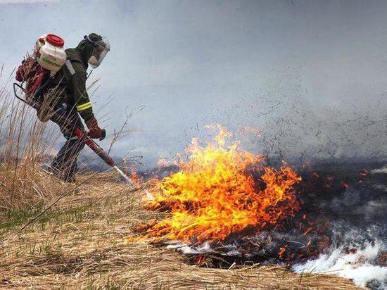 «Тушилы» нам не нужны: власти не хотят делиться горящими лесами Забайкалья