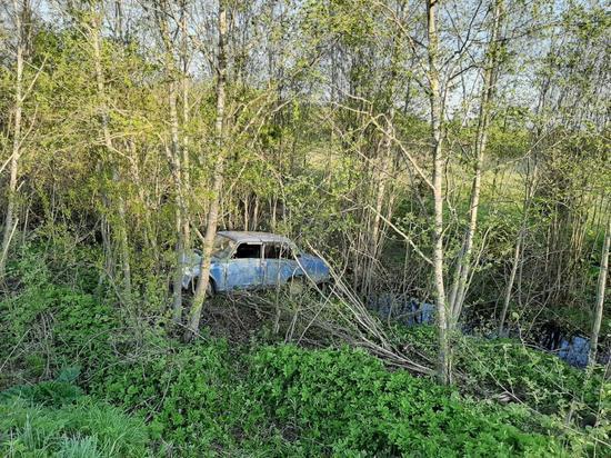 Пьяный водитель без прав протаранил дерево в Тверской области