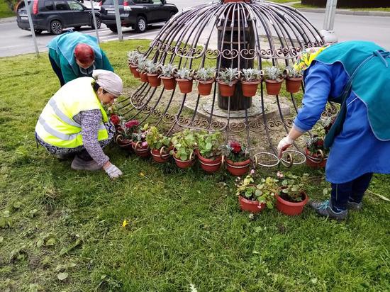 Тысячи цветов появились на городских клумбах в Серпухове