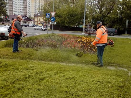 Коммунальщики Серпухова продолжают сезонную уборку