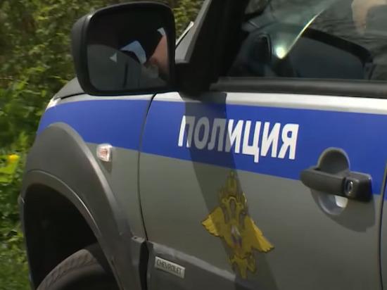 В Псковской области завели уголовное дело после исчезновения девочки