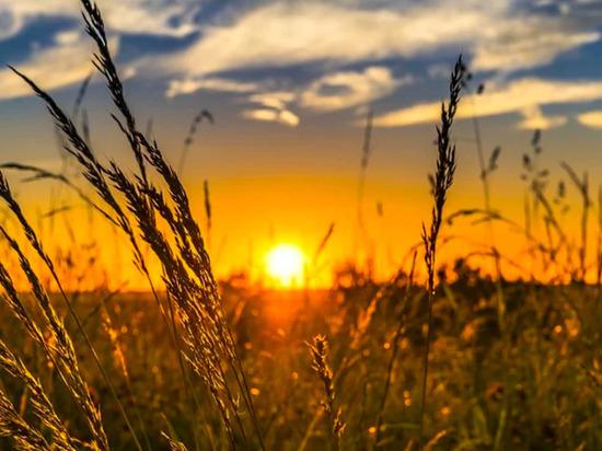 В Тульскую область заглянет лето