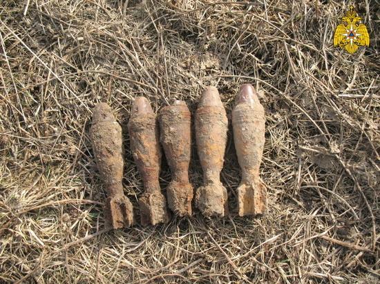 В Брасовском районе нашли боезапас времен войны