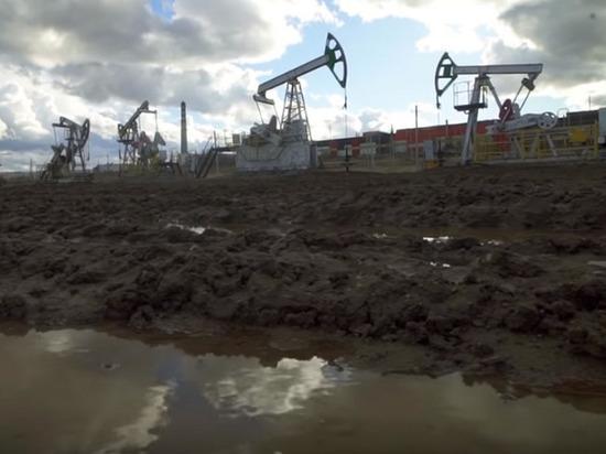 Потенциал открытия крупных месторождений в освоенных рудных и нефтегазоносных провинциях фактически исчерпан