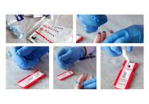 В редакции «МК» испытали на себе экспресс-тесты на COVID  и антитела