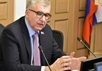 Депутат Госдумы Игорь Сапко поддержал поправки в Трудовой кодекс об удаленной работе