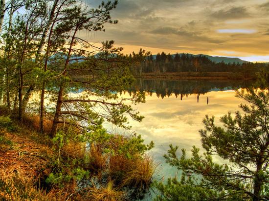 Природоохранная прокуратура заинтересовалась работами на охраняемой территории в Тверской области