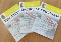 В Краснодаре изъято 126 подозрительных пропусков