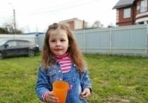 В следственном управлении подтвердили гибель ребенка под Псковом