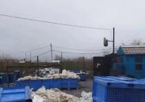Один из районов Салехарда заполонил запах гниющих рыбных отходов