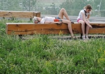 Москвичам рассказали о правилах прогулок: по адресу прописки