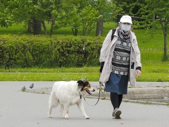 В Подмосковье разрешили гулять пенсионерам старше 65 лет