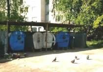 Целый ряд контейнерных площадок в Иванове проверили после сообщений от местных жителей