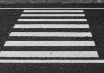 В Казани водитель выехал на красный и сбил двух пешеходов - один погиб