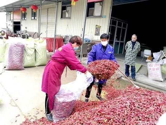 Китайцы сенсационно сознались про источник коронавируса