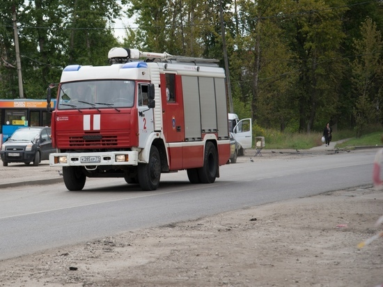 В Тульской области за сутки сгорели 2 машины и блок гаражей