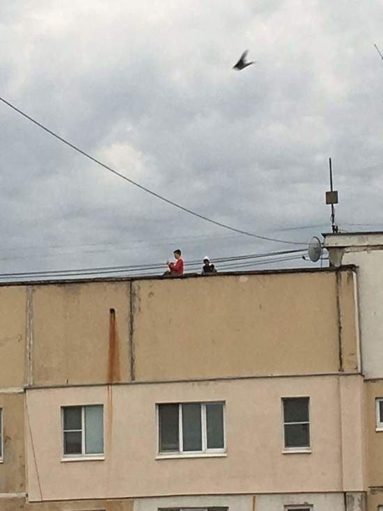 Соцсети опубликовали фото тульских детей на крыше многоэтажки