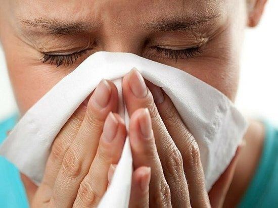 Как противостоять аллергии: памятка для жителей Ямала