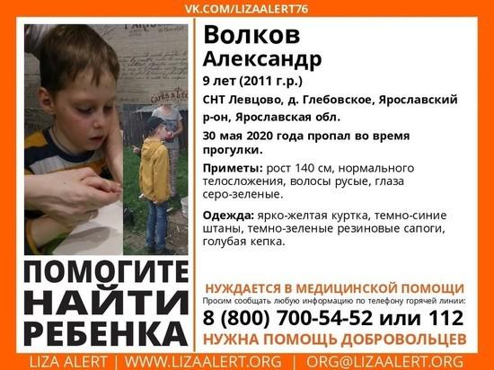 В Ярославском районе ищут девятилетнего мальчика