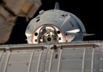 Успешный запуск и стыковка космического корабля Crew Dragon раздразнила всех