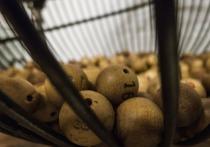 Житель Орла стал миллионером при помощи лотереи