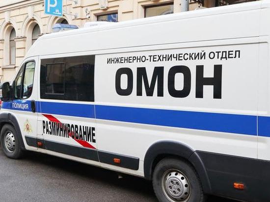 Школьница из псковской деревни заминировала более 440 «Пятерочек» в Санкт-Петербурге
