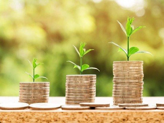 Поддержка бизнеса: две с половиной тысячи карельских предпринимателей получили помощь