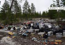 В Муравленко обнаружили 33 нелегальные масштабные свалки