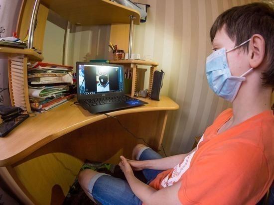 В Челябинске родителям школьников объявили, что дистанционное обучение продолжится в следующем году