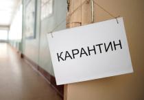 Из Таджикистана — в карантин: костромские учителя вернулись на летние каникулы