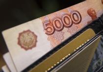 Семьи Хабаровского края начали получать путинские выплаты