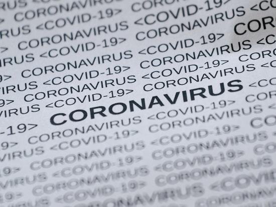 Во Владимирской области подтверждено еще 59 случаев COVID-19