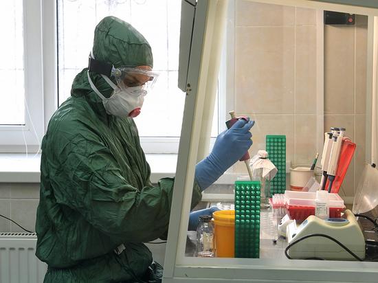 На коронавирус в Тверской области обследовано более 64 тысяч человек