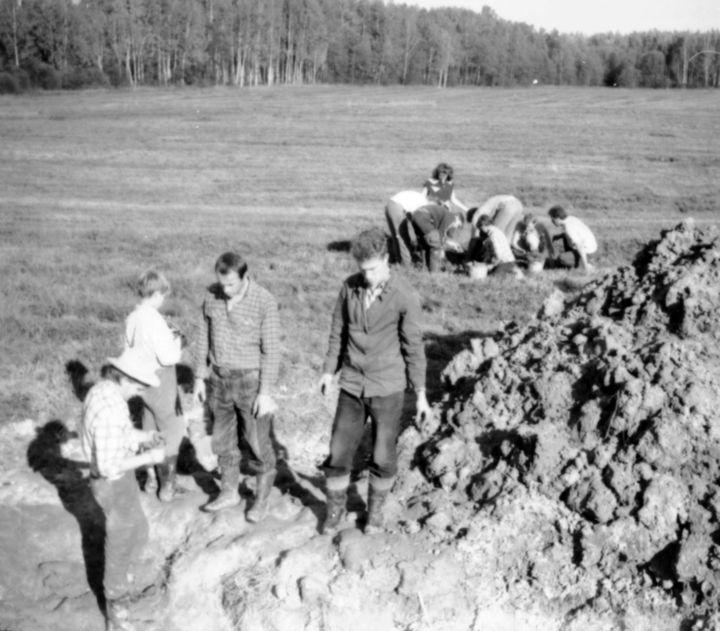 «История одного экспоната»: единственная жительница деревни в Тверской области видела крушение самолета