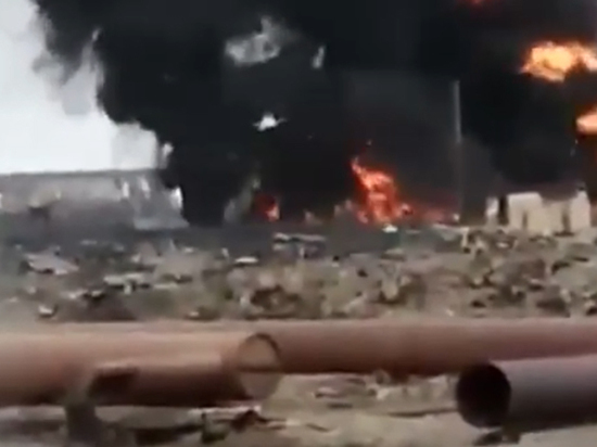 """""""Норникель"""" спровоцировал экологическую катастрофу"""