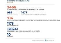 На Ямале за сутки выявили 51 новый случай коронавируса