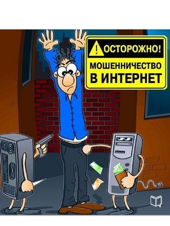 Костромские полицейские поймали кибер-мошенника