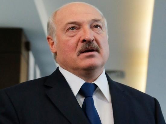 Лукашенко о пикетах за соперников на выборах: