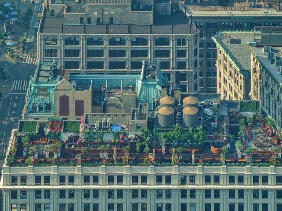 На московских крышах могут появиться сады и газоны
