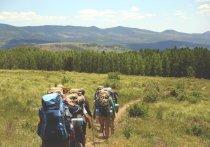 Алтайский туризм испытывает острый кризис вплоть до забоя прогулочных лошадей