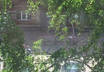 В Тамбовской области сняли карантин с дома - обсерватора