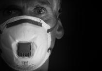 Данные по коронавирусу в Петербурге на 3 июня: 380 заболели, 323 выздоровели, 17 умерли