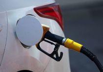 Эксперт предупредил о рыночном хаосе из-за запрета на импорт нефтепродуктов