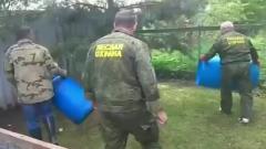 В Подмосковье на дачных участках поймали дикобраза