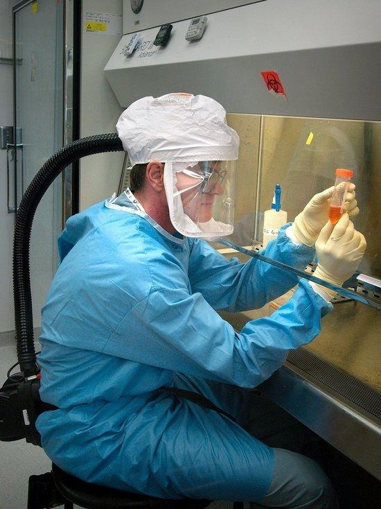 Ученый назвал, сколько держится иммунитет к коронавирусу